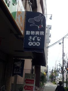 20120603_165152.jpg