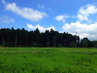 utaichi (11).JPG